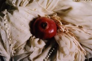 - Це вам, солодка донно, передав сеньйор у масці, імені не знаю… Зухвалий вчинок, адже всім відомо, що квітка із граната  – знак жаги…