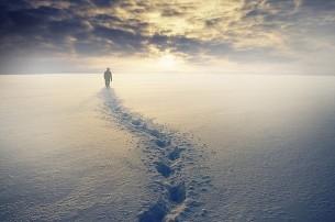 ... из тьмы и холода, где было мне суждено уцелеть, а другие -- может быть с большим даром, сильнее меня -- погибли...