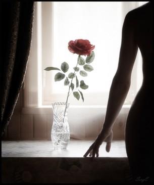 Розы уткнулись в вазу  они держались достойно  стройная ножки на зависть  на длинных шеях бутоны  ими еще любовались  рядом благоухал воздух  ароматами и комплиментами  казалось что праздник  не кончится...