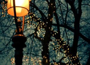 Лишь бульварный фонарь в это время цветущ, На чугунных ветвях темноту освещая. Это осень, мой друг! Это свежая чушь Расползается, тщательно дни сокращая...