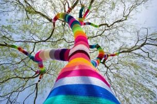 ...потому что любовь это дерево - ветви вскинув,  гладит ветер, целуя листьями, на лету.