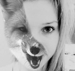 только были у нашей лисы два хвоста несвиденной красы, только слишком уж крупная рана...