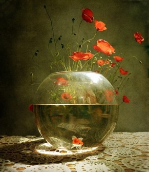 ...the aroma of free schools of ocean fish who swim to the vase of roses, still soaked with morning dew.
