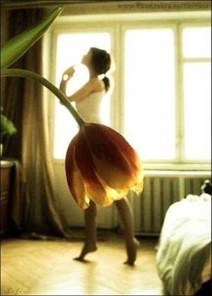 Ти втретє цього літа зацвітеш   Такою квіткою тендітною п'янкою.   Кімната втратить риси супокою,   Бо речі увійдуть у твій кортеж...